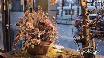 Blumenhaus am Hofgarten