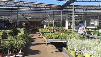 Turkenburg Gartencenter&Baumschule
